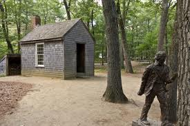 Henry David Thoreau's shack on Walden Pond. Two magnitudes beneath this idyllic scene a fierce battle raged.